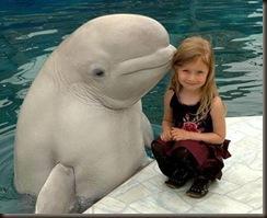 extraordinary.dolphin
