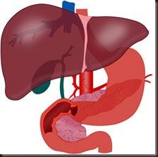 liver-jetra