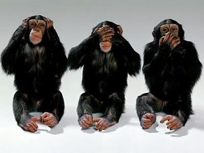 _sp-tri-majmuna